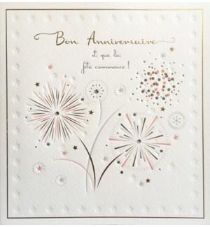 Bon Anniversaire Fireworks|Z