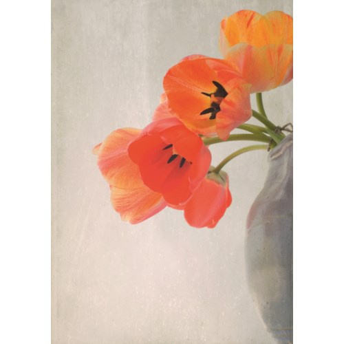 Red Tulips 5x7|Art Press