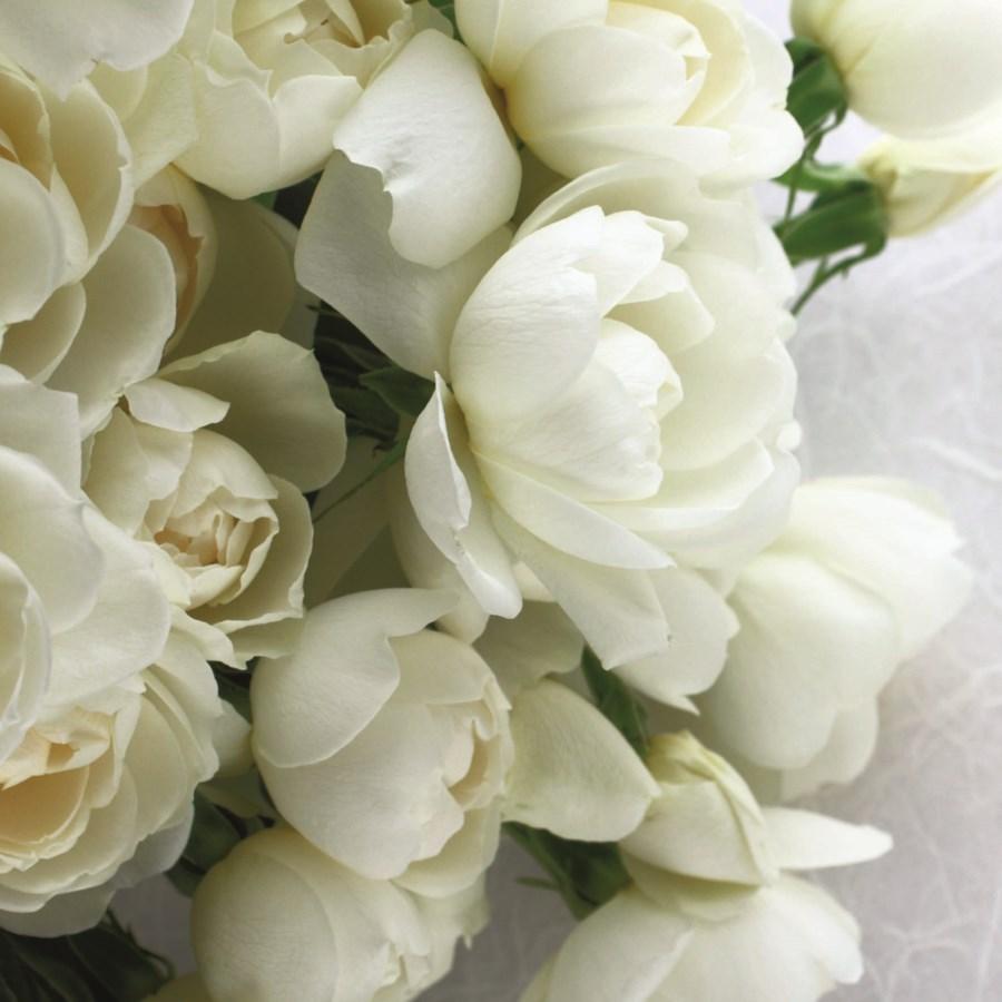 White Rose Bouquet|Art Press