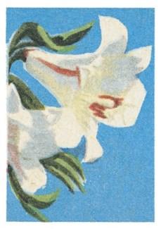 Lily|Art Press