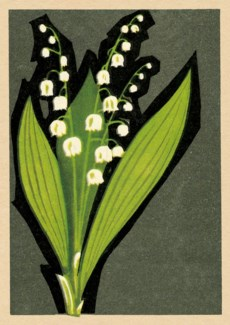Lily of the Valley 5x7|Art Press