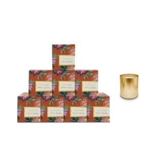 Prosecco & Vanilla Boxed Candle Pre-Pack