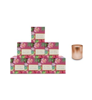 Orchid & White Lily Boxed Candle Pre-Pack