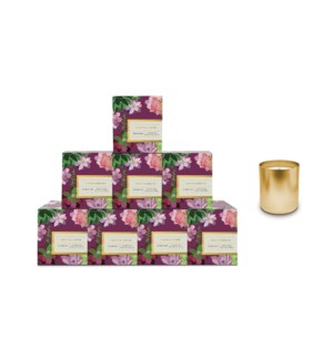 Freesia & Incense Boxed Candle Pre-Pack
