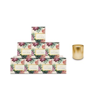 Siberian Fir Boxed Candle Pre-Pack