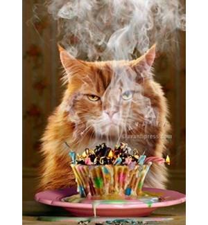 Birthday Cupcake|Z