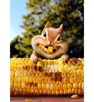Chipmunk Corn Teeth 5x7|Z
