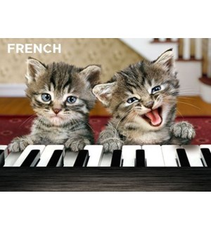 French Kittens Play Piano 5x7 |Z