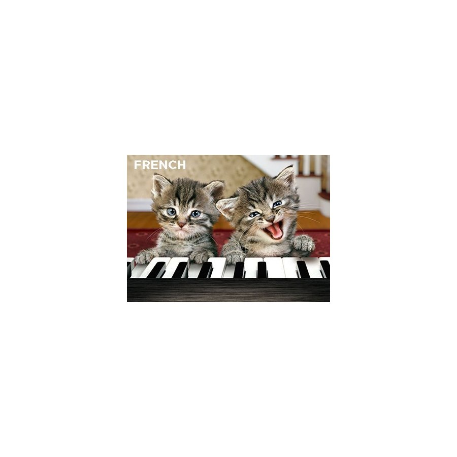 French Kittens Play Piano 5x7  Z