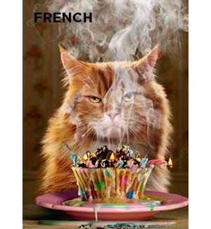 French Birthday Cupcake 5x7 |Z