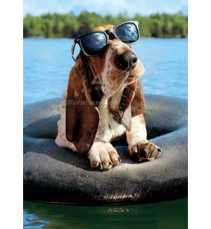 Basset Hound Wearing Sunglasses 5x7|Z