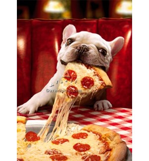 Dog With Cheesy Pizza Slice 5x7|Z