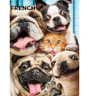 French Dog Cat Photo Booth Fun 5x7 |Z