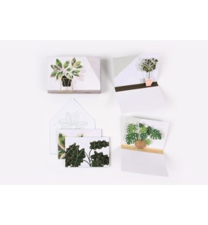 Potted Plants-Boxed Notes