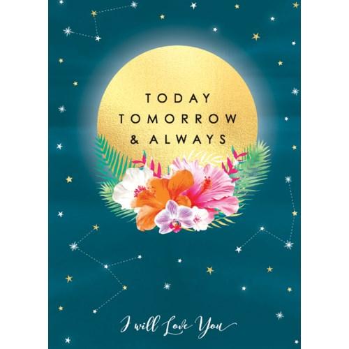 Today Tomorrow|Calypso