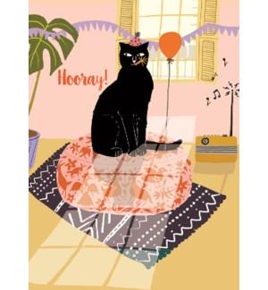 Hooray Cat|Calypso