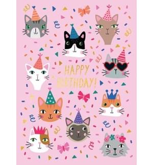 Party Cats|Calypso