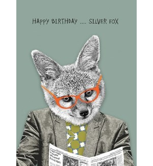 Silver Fox|Calypso