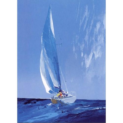 Sailing Into Rain 5x7|Canns Down