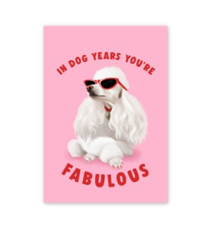 In Dog Years You're Fabulous|Central 23