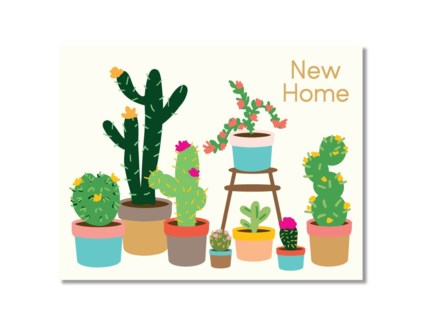 Cactus Home Designs by Val
