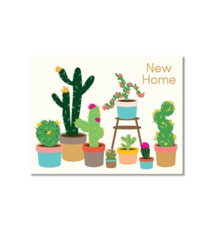 Cactus Home|Designs by Val
