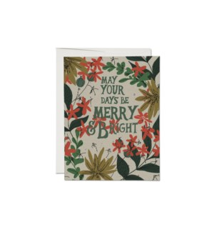 May Your Days Holiday boxed set