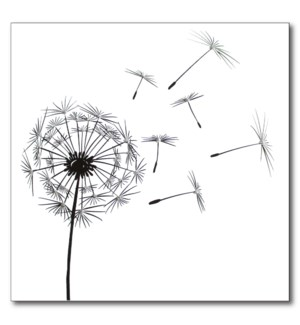 Dandelion Fluff|English Graphics