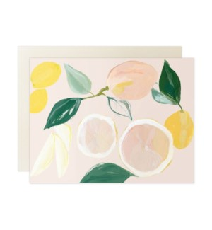 Citrus Blank Box Set
