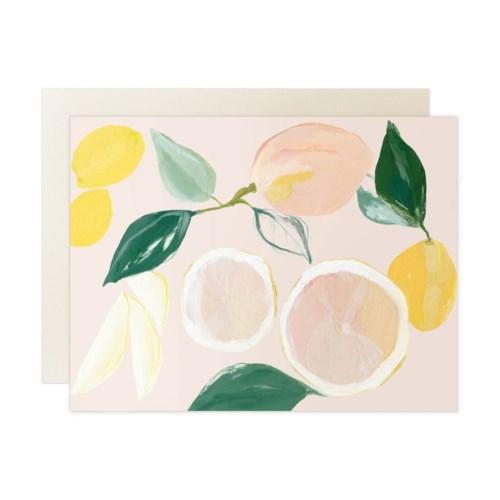 Citrus Blank Box Set of 8