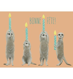 French Meerkats And Candles|Halfpenny