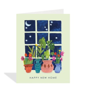 Plants on Windowsill|Halfpenny