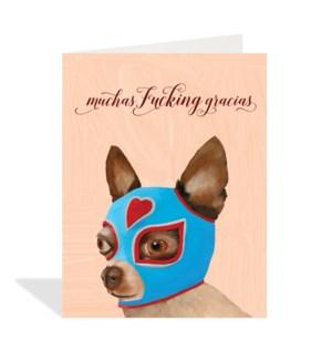 Luchador chihuahua dog|Halfpenny