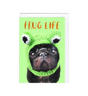 Frug|Jolly Awesome