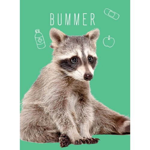 Fur Bummer 5x7|J & M Martinez