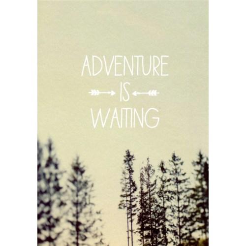 Adventure is Waiting 4.25X6|Lagom Design