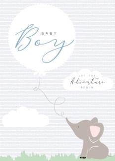 Baby Boy Adevenure 5x7|Laura Darrington