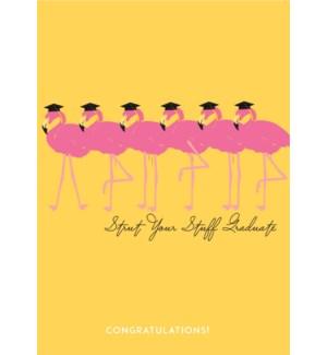 Flamingo Graduation|Designs By Maria