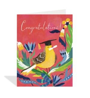Congratulations Grad|Halfpenny