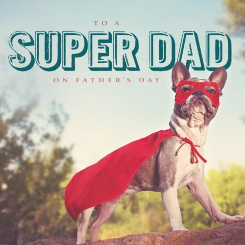 Super Hero Bulldog|Ling Design