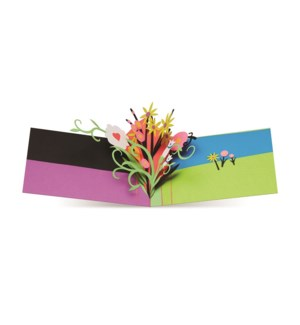 Carter Playful Blossoms box of 6