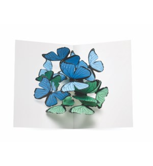 Beautiful Butterflies-Boxed Cards  6 cards & envelopes