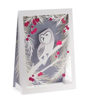 Huang Wintry Owl box of 8