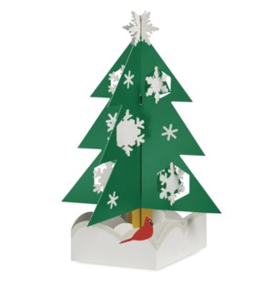 Johnson Snowy Pine box of 8