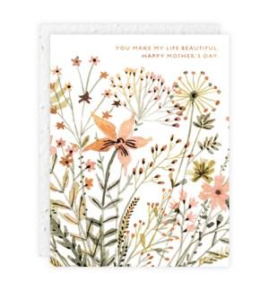 Wildflowers|Seedlings