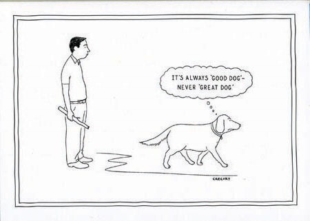 Great Dog 5x7|New Yorker