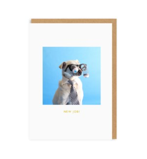 New Job Dog|Ohh Deer