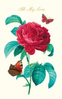 Butterflies & Rose|Pigment Productions