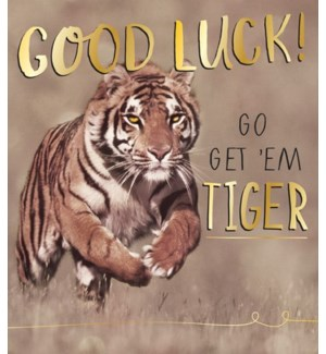 Go Get Em Tiger 5x7|Pigment Productions