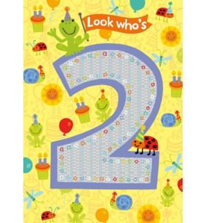 Age 2 Pattern Foil Card|Peaceable Kingdom